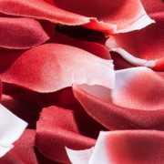 Сувениры: Лепестки роз с запахом