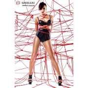 Комплект Shinju: лиф, высокие трусики и верёвки для связыван...