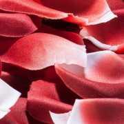 Лепестки роз с запахом